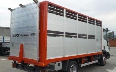 furgoni torino