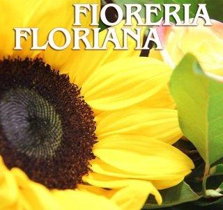 fioraio interflora bologna