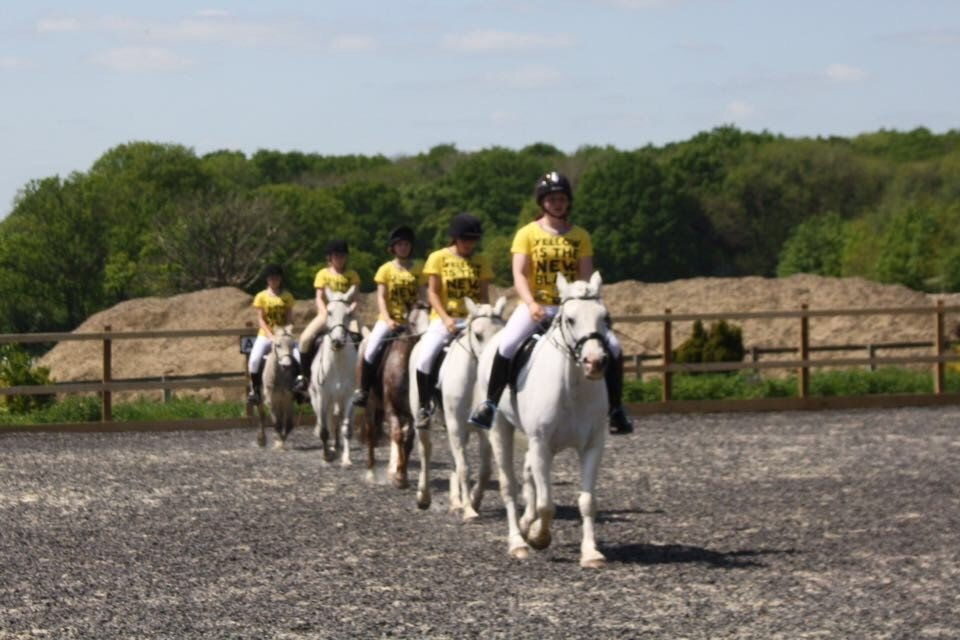 Riding School Tanglewood Equestrian Centre