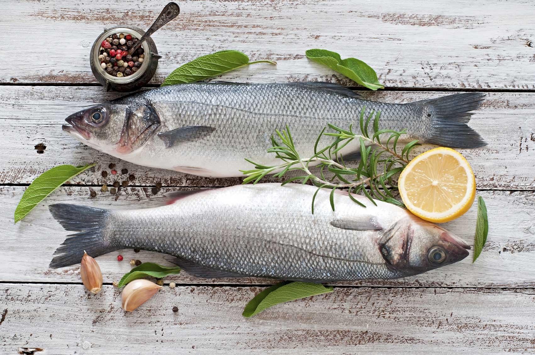 Seafood Supplier, Launceston, TAS