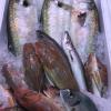 Pesce nostrano