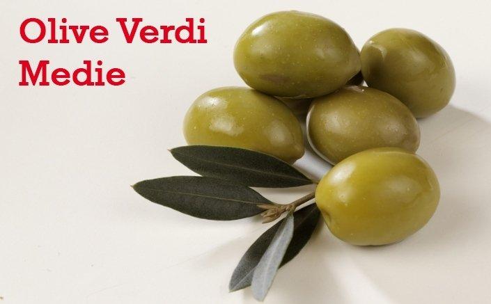 olive verdi medie