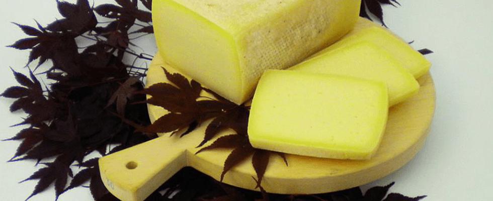 formaggio da piastra