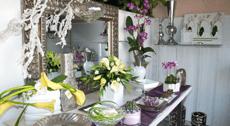 Fiori e piante - vendita al dettaglio
