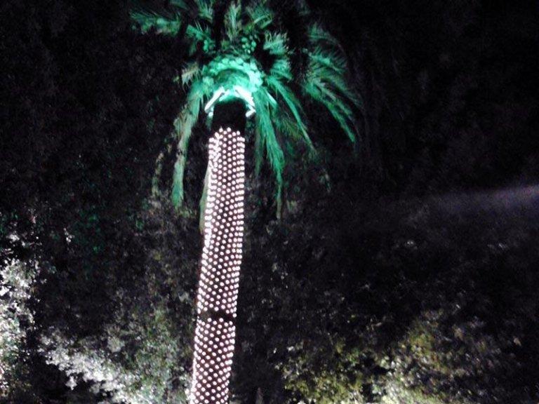 illuminazione giardini