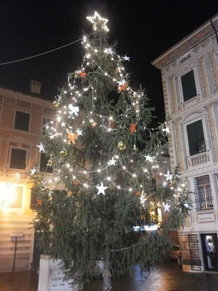 illuminazioni albero