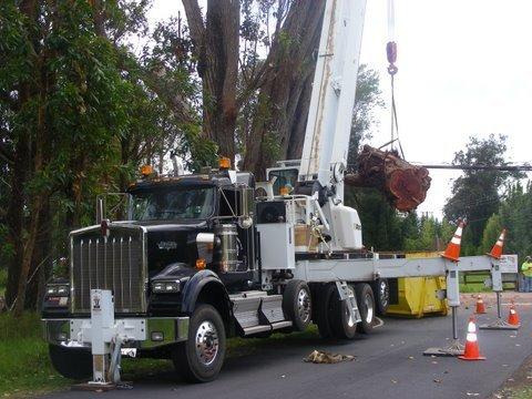 Crane services working in Kona, HI