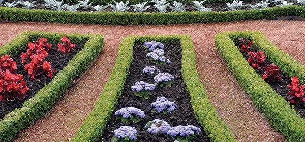 chris smiths happy gardeners well maintained garden pathway