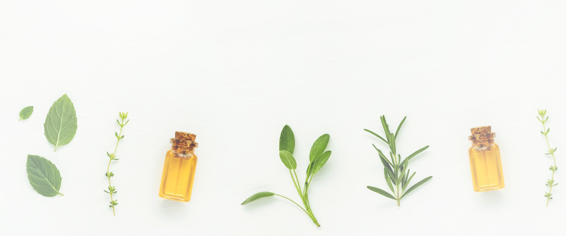 herbs aligned on a board with tiny essence bottles