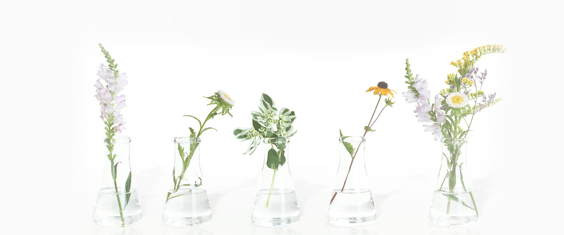 herbs in tiny jars