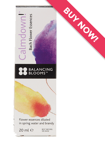 calmdown product with buy now banner