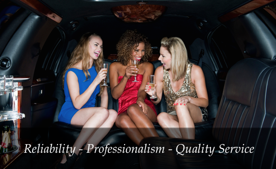 St Paul, Mn Limo Party Bus Rental Service