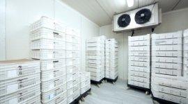 pompe di calore, pompa di calore, impianti di climatizzazione