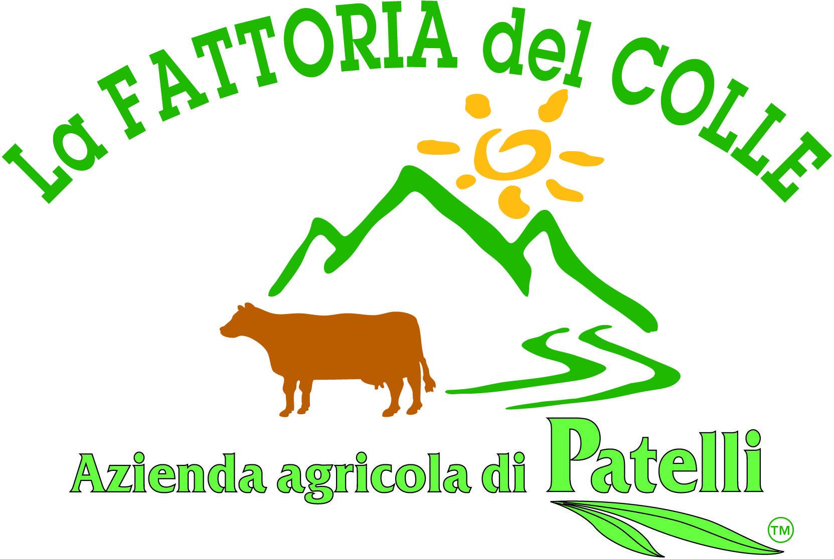 FATTORIA DEL COLLE - LOGO