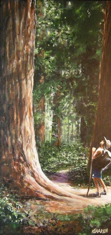 Inspiration in the Sequoias