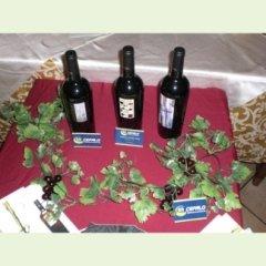 vini e prodotti tipici molisani
