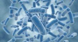 trattamento infezioni virali, ph acido, forme patogene