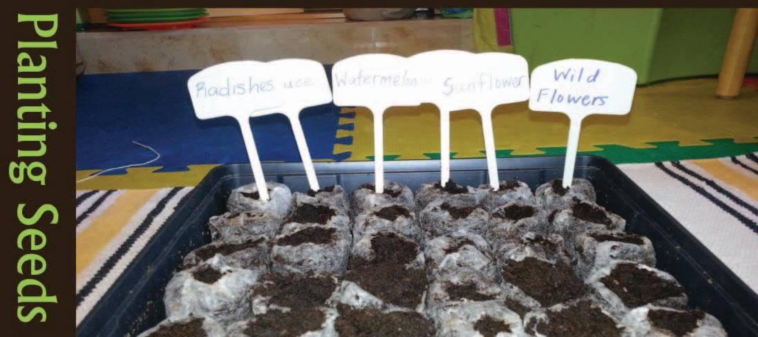 Bilingual Preschool Dublin, CA