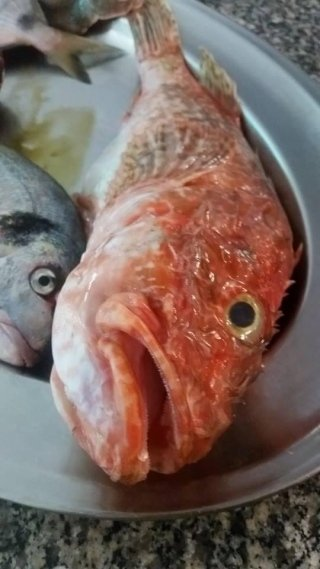 Specialità di Pesce Santa Teresa