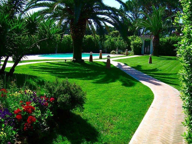 sentiero con palme