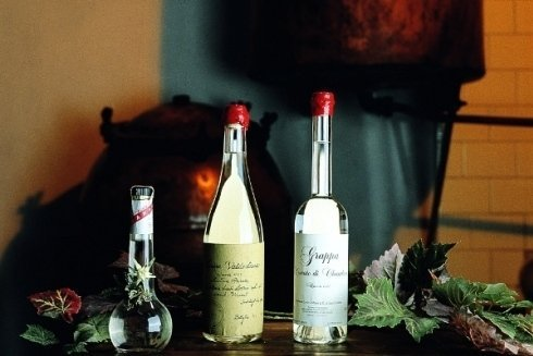Distillati di frutta saint vincent distilleria cortese - Diversi tipi di caffe ...