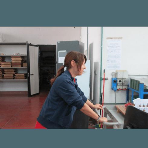 satema, forlì, avvolgimenti elettromeccanici, pompe dab, lo staff,