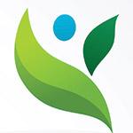 icona foglie verdi