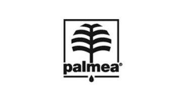 icona palmea