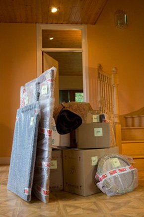 Domestic removals