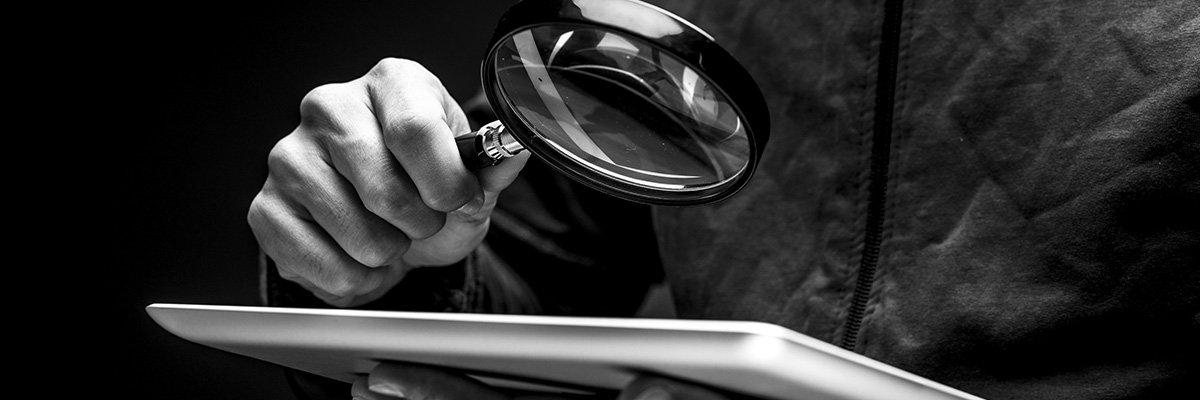 Budget Private Investigator hero 2