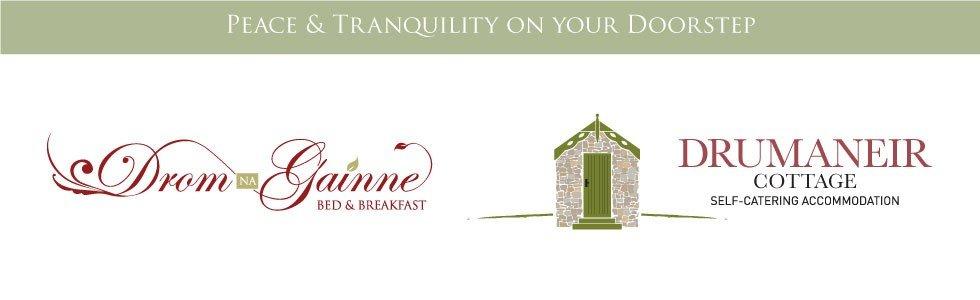 Drom Na Gainne logo