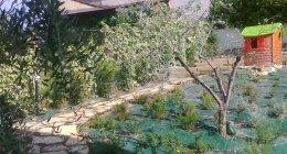 impianti irrigazione giardini, impianti illuminazione giardini, recinzione giardini