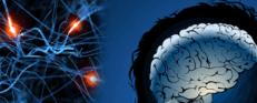 neurologia, cervello, medico