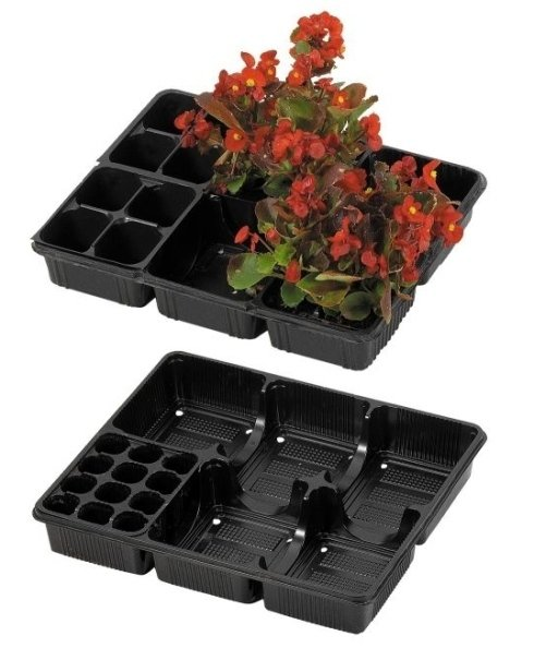 contenitori per sementi