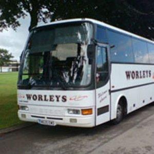 worley coaches