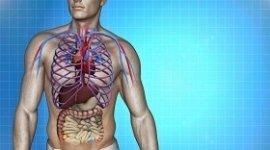 acrosindromi, vasculiti, sindrome dello stretto toracico superiore