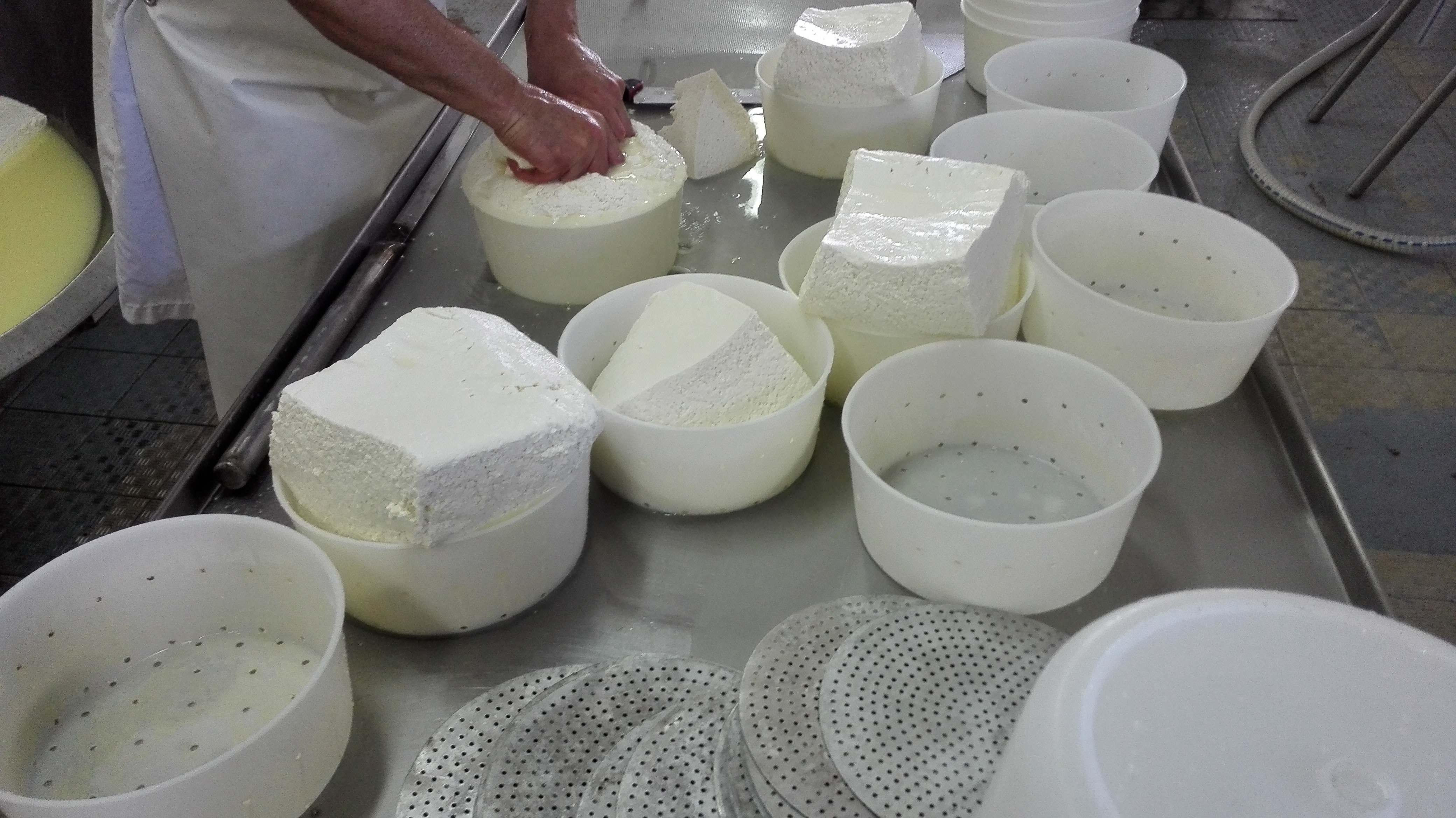 Lavorazione di formaggi freschi