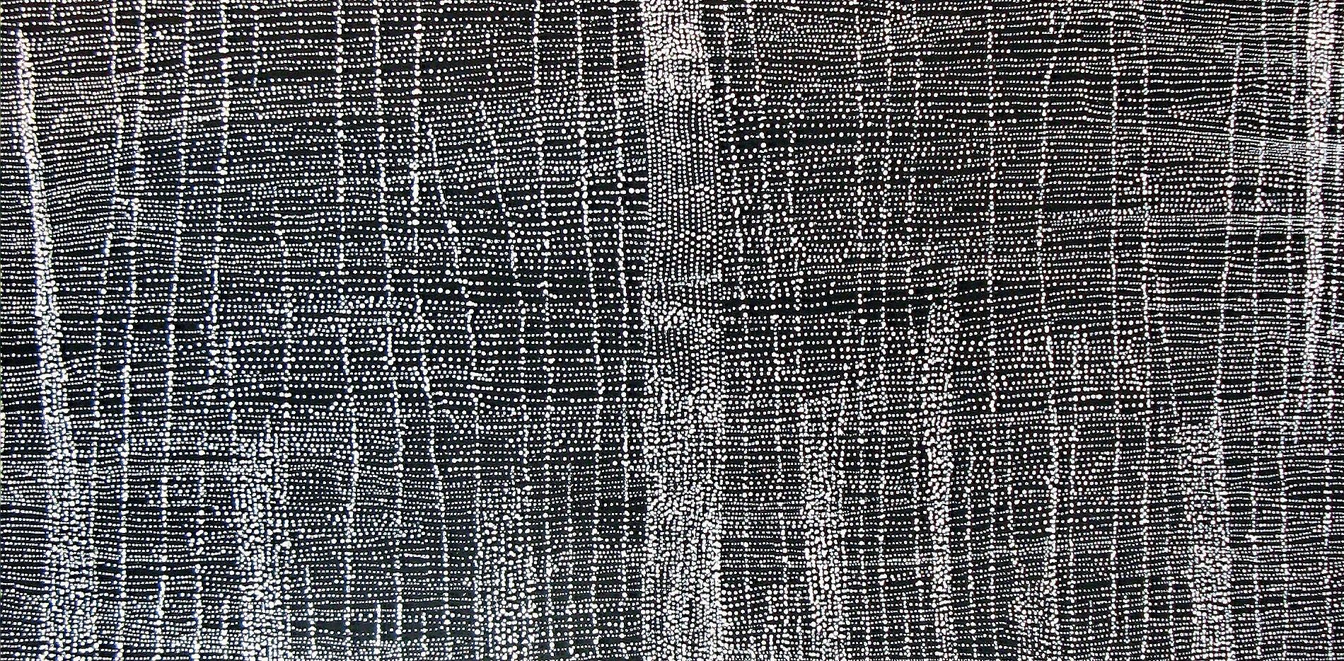 Dorothy Napangardi artwork