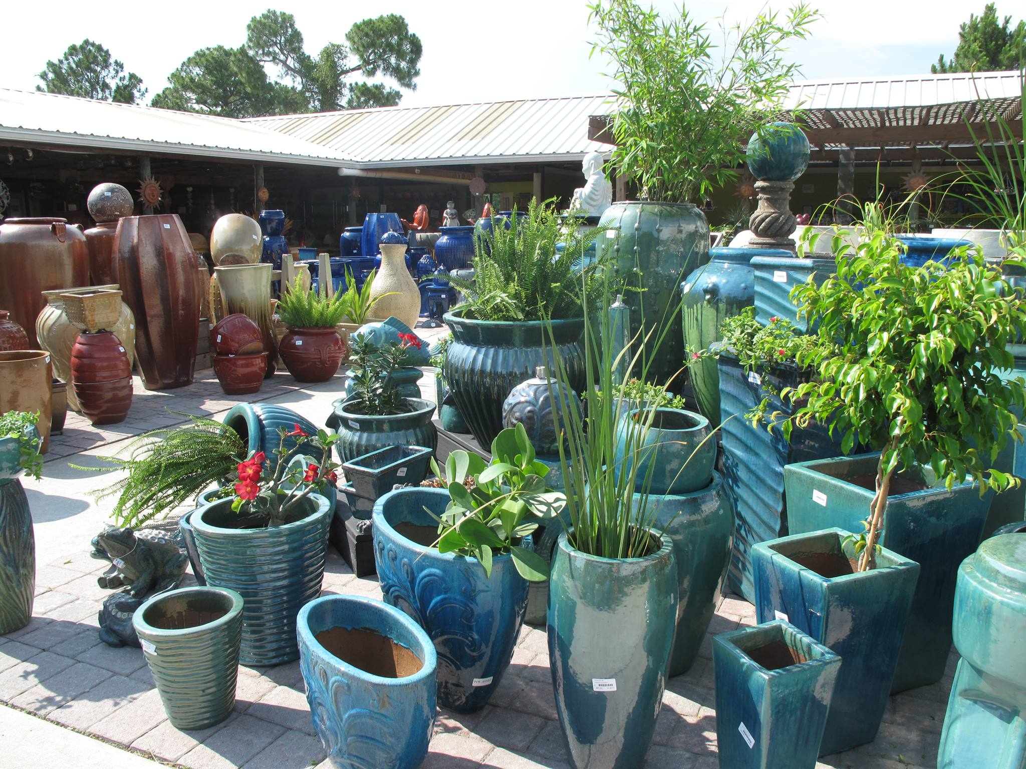 Jacksonville Fl Farm Garden Craigslist Autos Post