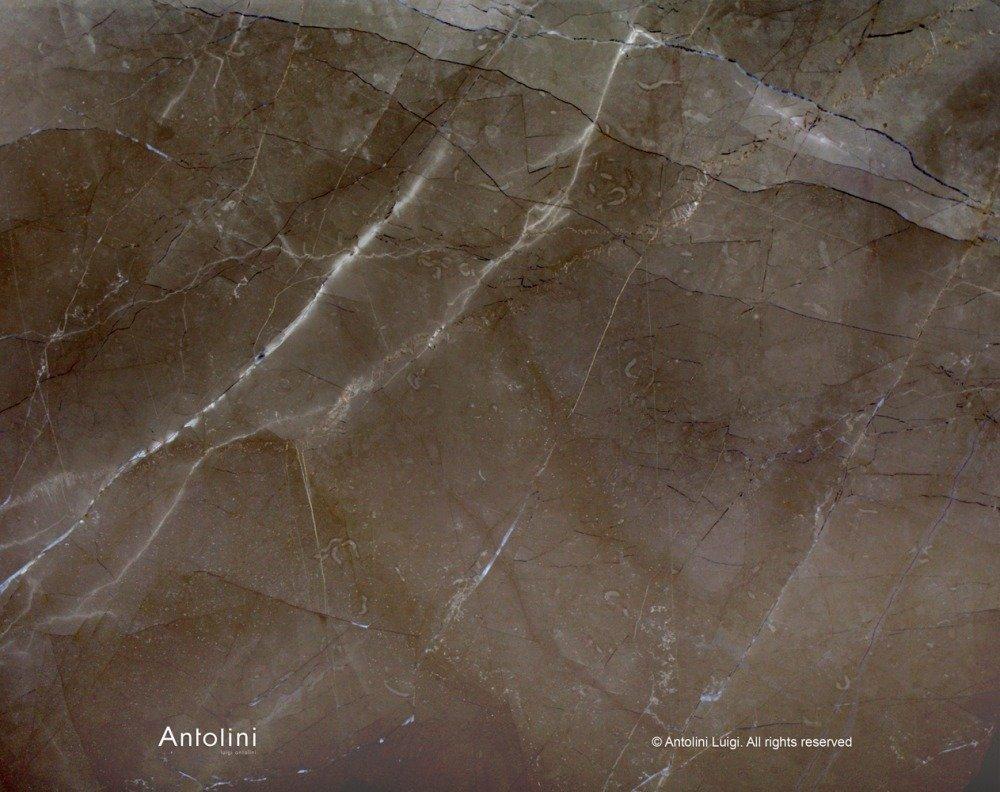 marmo marrone striato di bianco