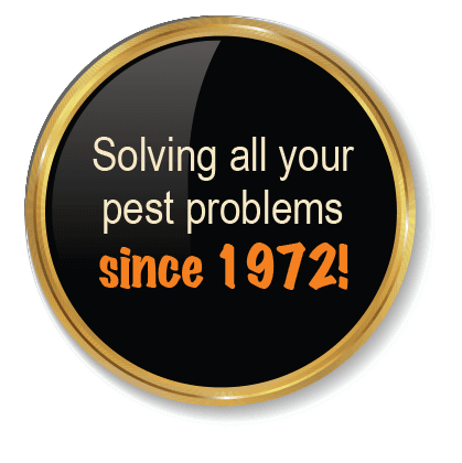 Solving all your pest problems since 1972