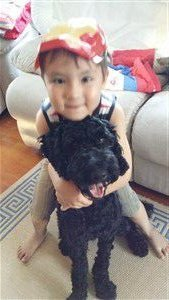 Child and 1 year old Poodle