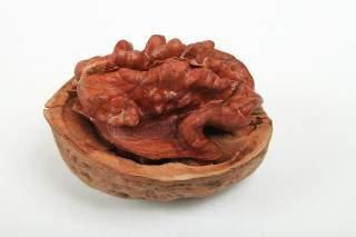 walnut cracked open