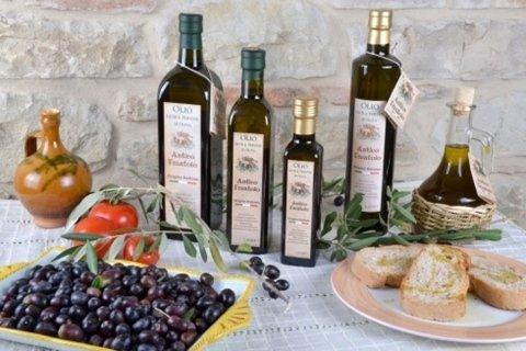 Olio, olive, pane e olio, pomodori