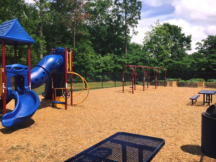 Anne Farish Playground