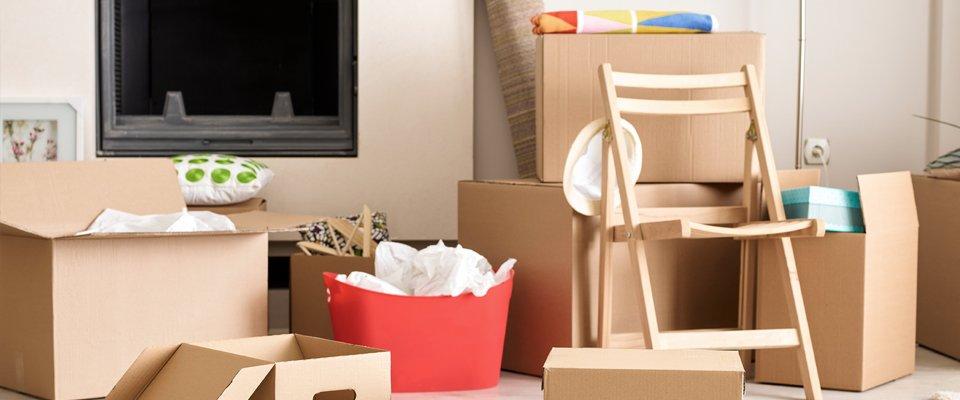 goods in cartons