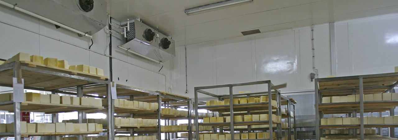 Shelves in a refrigerated warehouse