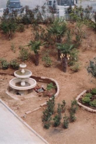 Manutenzione Parchi e Giardini