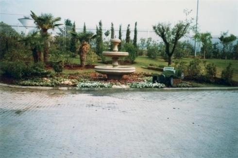 Giardinaggio - Manutenzione giardini - Val Della Torre - Torino - Rivoli - San Gillio - Pianezza ...