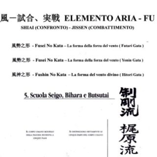 NIPPON KEMPO PROGRAMMA ELEMENTO ARIA ITALIA